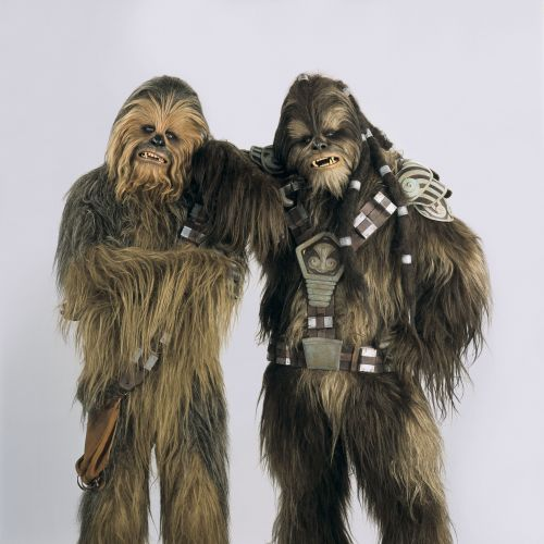 chewbacca and the wookie